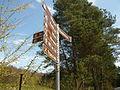 2010-04-23 Wandlitz am Waldhotele fec AMA.B 771.JPG