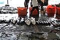 2010 07 13610 6478 Chenggong Chenggong Fishing Harbor Taiwan.JPG