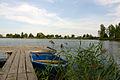 2011-09 Elsnigk 01.jpg