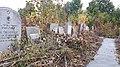 20171004 125929 Jewish cemetery in Bacău.jpg