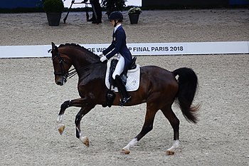 2018FEI-WORLD-CUP-DRESSAGE-Laura-Graves.jpg