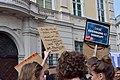 2019-05-18 - Demo für Neuwahlen nach Ibiza-Affäre - 18.jpg