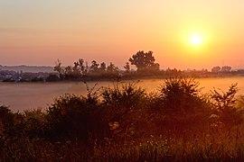 20200809 Poranna mgła wokół Górki Pychowickiej w Krakowie 0549 3476.jpg