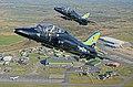 208(R) Squadron Centenary.jpg