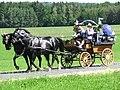 21te Rammenauer Schlossrundfahrt der Pferdegespanne (013).jpg