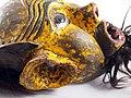 2248 5500b detail Chewa Mask (7452410552).jpg