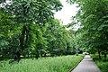 46-112-5001 Stryi Shevchenko Park RB 18.jpg