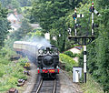 5786 South Devon Railway (2).jpg