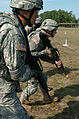 5th NCO and Soldier of the Year Competition Day Weapon Qualifica DVIDS31246.jpg