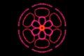 6-fold rotational and reflectional symmetry 130127 154710.png