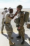 82nd Airborne, 16 Air Assault make first jumps for bilateral exercise 150317-A-DP764-004.jpg