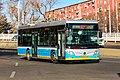 9532245 at Erligoudongkou (20191230140218).jpg