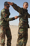 ANA soldiers train to rid Afghanistan of IEDs DVIDS334774.jpg