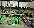A Naga village market shed, Nagaland.jpg