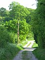 A bridleway near Stockbridge - geograph.org.uk - 808474.jpg