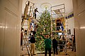 A team of volunteers decorates the official White House Christmas Tree in the Blue Room of the White House.jpg