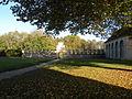 Abbaye de Chaalis - Roseraie 1.JPG