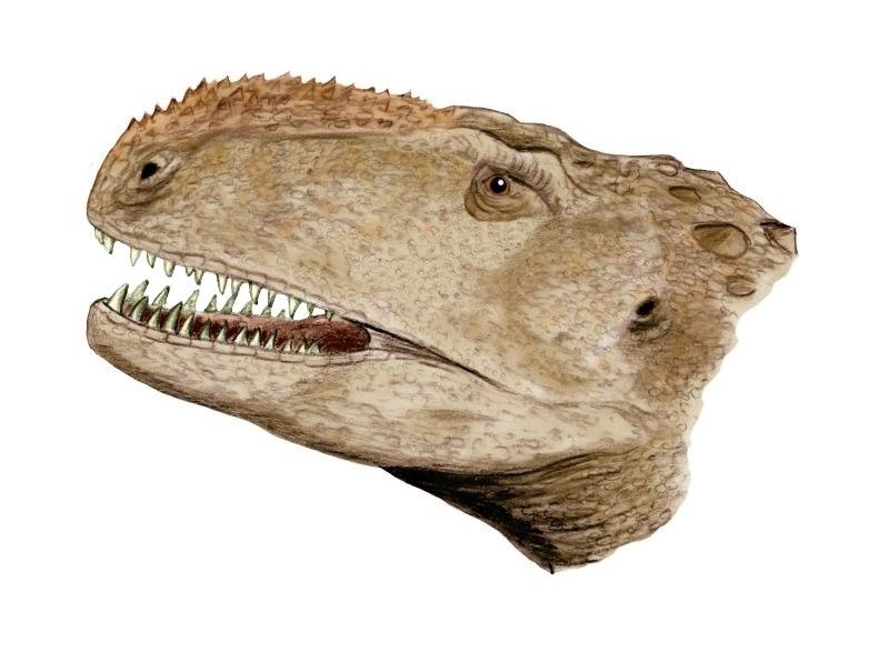 Abelisaurus BW