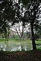 Acharya Jagadish Chandra Bose Indian Botanic Garden - Howrah 2011-02-20 1524.JPG