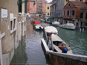 Acqua Alta 1 12 2008.JPG