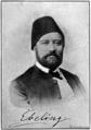 Adolf Ebeling (1827–1896).png