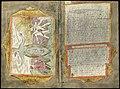 Adriaen Coenen's Visboeck - KB 78 E 54 - folios 052v (left) and 053r (right).jpg