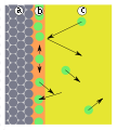 Adsorption-monolayer.svg