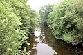 Afon Vyrnwy from Pontrobert Bridge - geograph.org.uk - 1339079.jpg