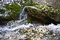 Agua - panoramio (7).jpg