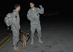 Air Force Airmen Assisting Army Soldiers DVIDS147056.jpg