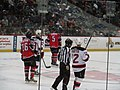 Albany Devils vs. Portland Pirates - December 28, 2013 (11622826806).jpg