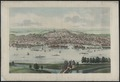 Albany Lithograph 1850s.tif