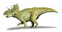 Albertaceratops BW2.jpg