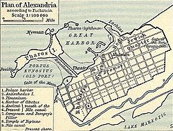 Alexandreia anc Shepherd
