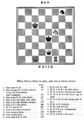 Alice chess game.png
