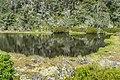 Alpine tarn on Lewis Pass 12.jpg
