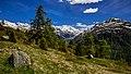 Alps of Switzerland DSC 2029-14 (14515076948).jpg