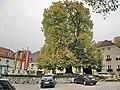 Alte Linde, Persenbeug - panoramio.jpg