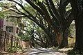 Altinho, Panjim, Goa, India - panoramio - Robert Helvie (2).jpg
