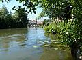 Amiens, les hortillonnages, (13).jpg