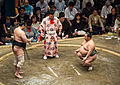 Aminishiki vs. Toyonoshima May 2014 001.jpg