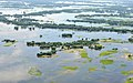 An aerial view of flood-affected areas of Assam on July 02, 2012 (1).jpg