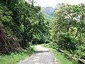 Anamalai Tiger Reserve, Pollachi - panoramio (1).jpg