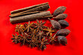 Anise and red cloth - 12193549445.jpg