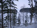 Anitsanlahti in Winter.JPG