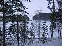 Anitsanlahti in Winter.JPG