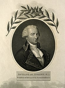 Antoine de Jussieu (detail). Stipple engraving by W. Evans, Wellcome V0003159.jpg