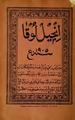 Arabi malayalam luke gospel 1905.pdf