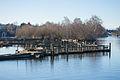 Arboretum Waterfront Trail Boardwalk.jpg