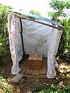 Eng Arborloo op Haiti